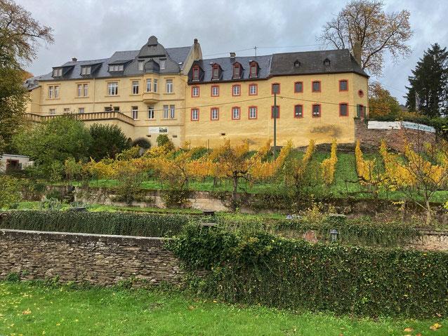 Klosterhof Siebenborn von der Talseite aus gesehen.