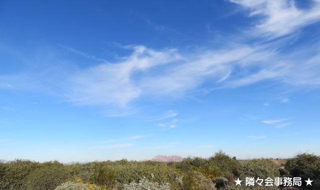 ☆☺★ アリゾナの精霊ココペリ(Kokopelli)於: 原種ホホバの聖地アリゾナ州ハクアハラヴァレー★☺☆ 笛を吹きながら音楽で人を平和にする、愛・幸福・子宝・五穀豊穣の精霊として親しまれています。隣々会でもココペリをシンボルマークの一つとしています!