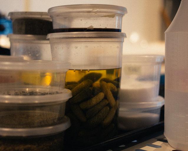 température de conservation des aliments