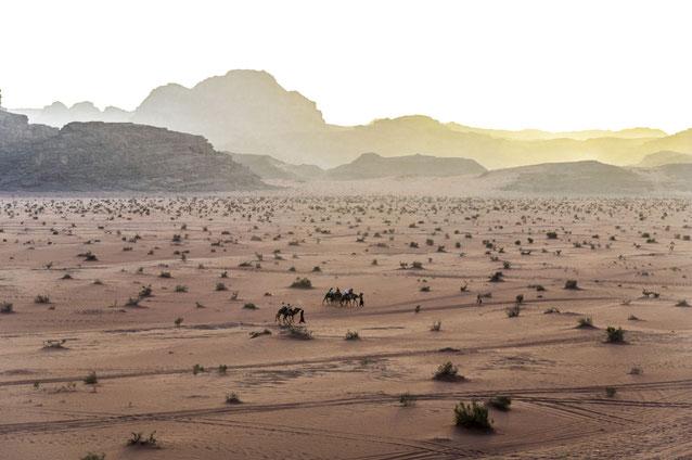 Sonnenuntergangsstimmung im Wadi Rum