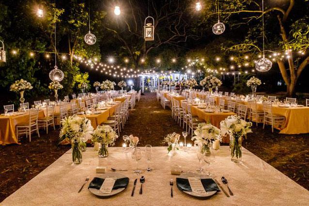luces para boda en jardin