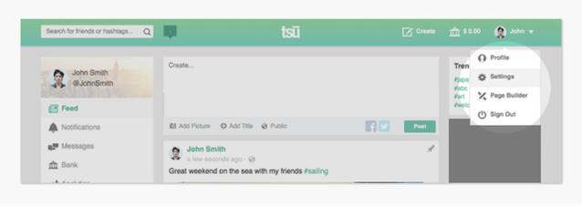 スー(tsu,tsū)のプロフィール設定画面