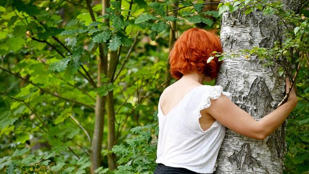 Gesundheit stärken durch das Waldbaden