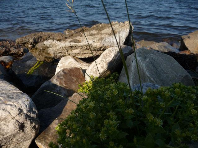 18.07.2014 - Norwegen, in der Nähe des Nordkapps
