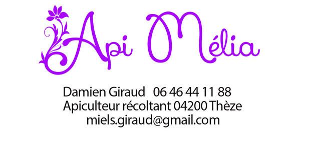 Api Mélia, miel Damien Giraud THEZE Alpes de Haute Provence