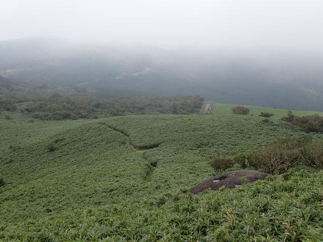 伊豆山稜線トレイルを歩きます