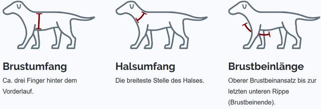 Grossenbacher Geschirr Groessenermittlung_Welche Groesse fuer meinen Hund