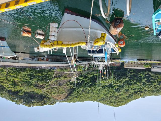 第八博潮丸 遊漁船 ヤマハ船 DY45G-1A 定員8名
