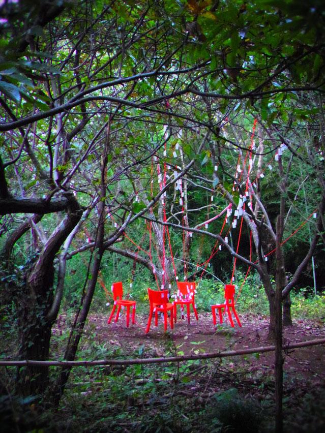 布佐市民の森