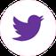 Button: Twitter