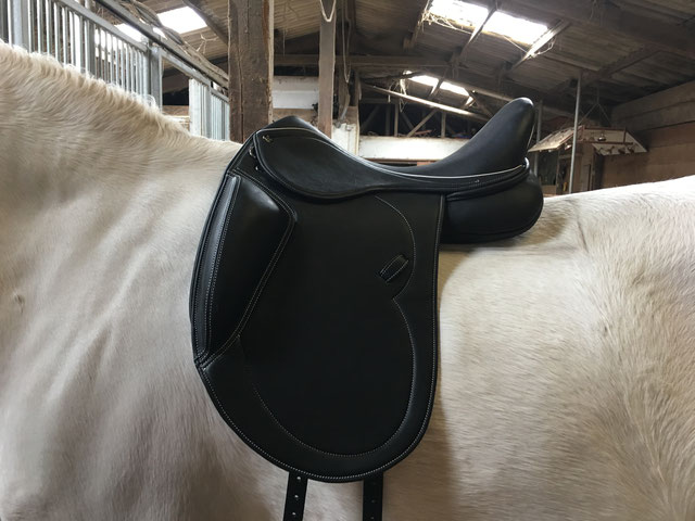 Plus Kissen auf dem Pferd