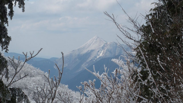 高見山に見とれました。この山もこの季節霧氷に魅せられた愛好者が多いそうです。                     小生は初夏に一度登ったがこんな秀麗を目にするのは初めて。登りたいなぁぁぁ!!