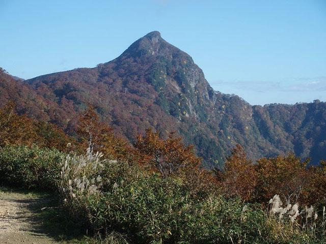 登山口から 端正な烏帽子そのものの山頂を望む