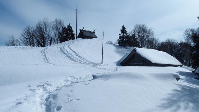 鳥居が雪に埋もれています 久しぶりの大雪ですね