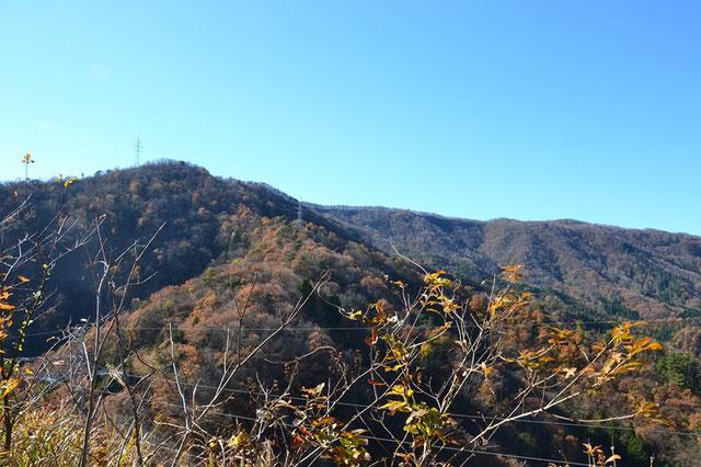目指す藤倉山 あの稜線に続くぶな林の下を歩くのが楽しみです (鍋倉山の手前から)