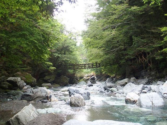 二重のかづら橋・・・祖谷渓の奥だけに観光客はまだら、その分いい雰囲気です