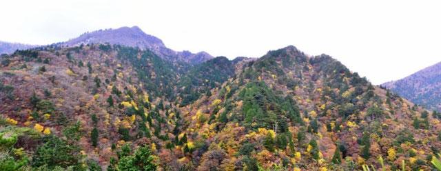 一番高いとんかった山が「鎌ヶ岳」(1161m)です