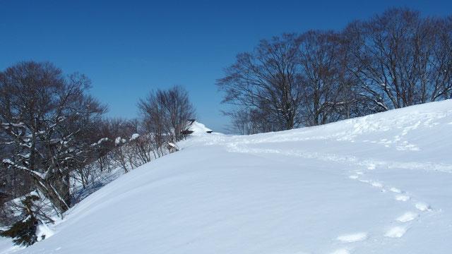 下山時の風景・・・鳥居付近から北の社を望む