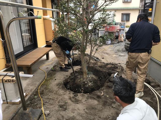 栃木県のバルコニー菜園のある家の家づくりの様子/植栽の植え替え