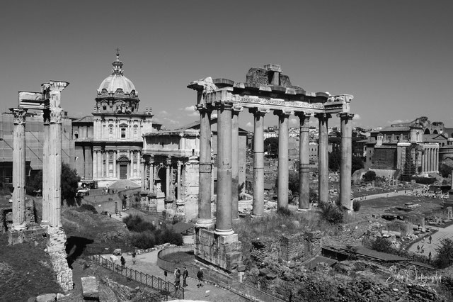 Rom / Forum Romanum, 2014, © Silly Photography