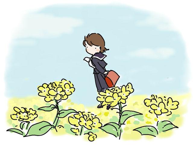 菜の花の径
