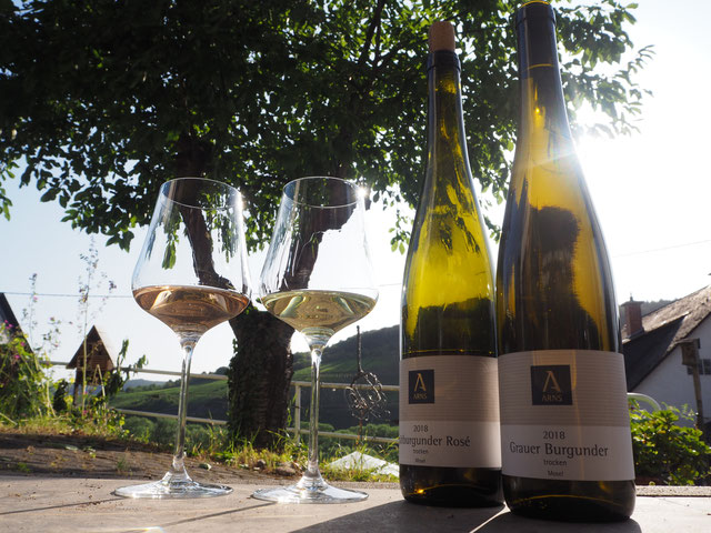 Weinprobe Grauburgunder und Rosé aus biologischem Anbau