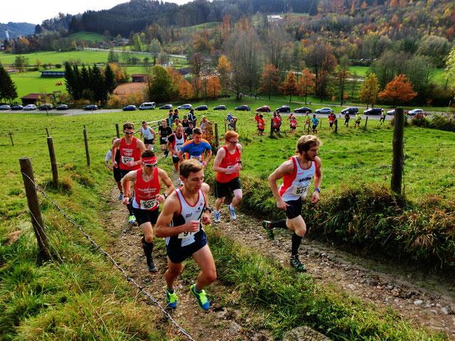Kurz nach dem Start im ersten Anstieg reiht sich bereits Läufer an Läufer