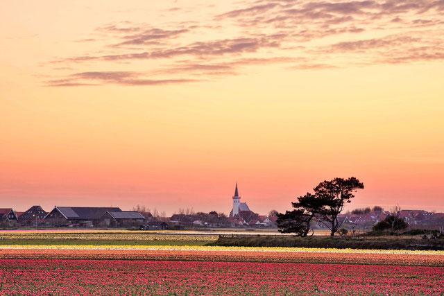 510 Den Hoorn in de vroege ochtend