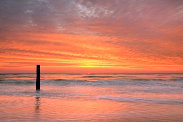 509 Noordzeekust Texel