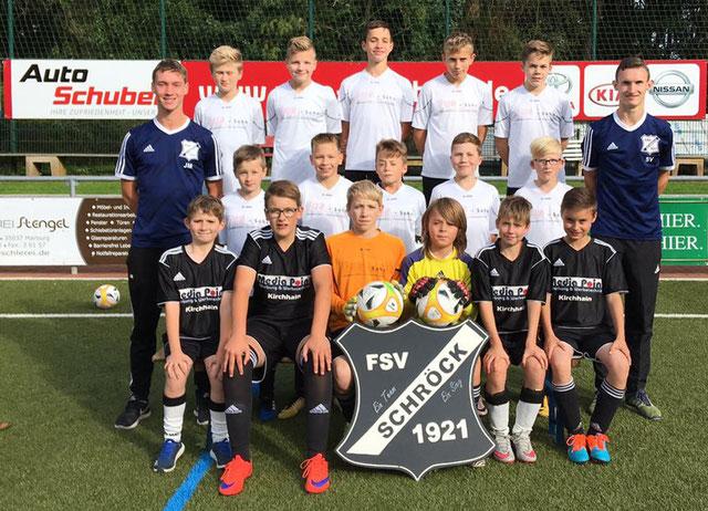 Teamfoto unserer D- Junioren Saison 2017/ 2018