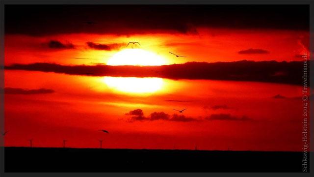 """Sonnenuntergang in """"Brasilien"""" an der Ostseeküste"""