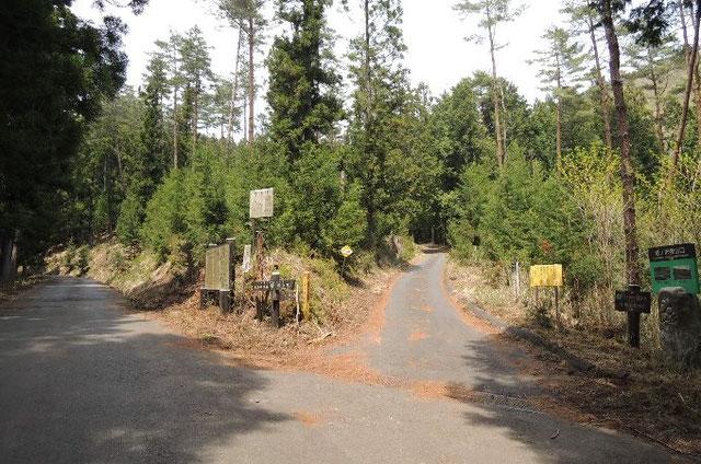 塔の沢線と林道西山小中線の分岐