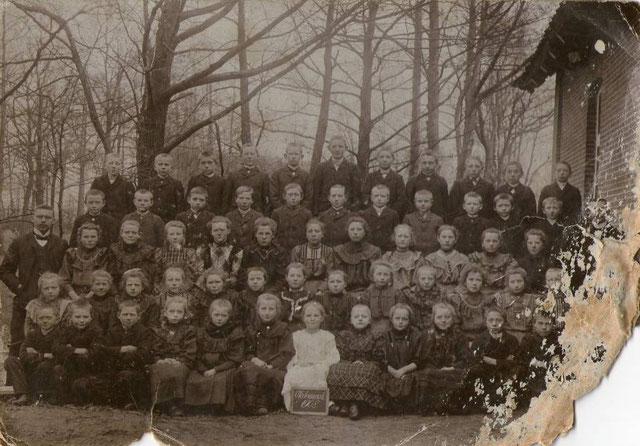 Ohrtermersch 1908