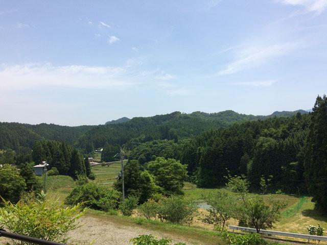 桜實神社より見渡す風景(筆者撮影)