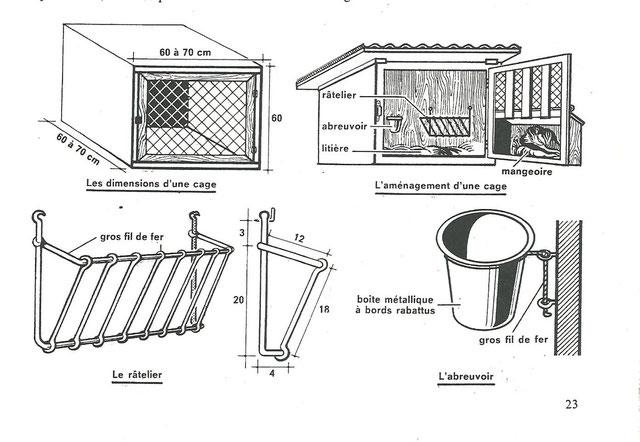 elevage des lapins site de bagrepole. Black Bedroom Furniture Sets. Home Design Ideas