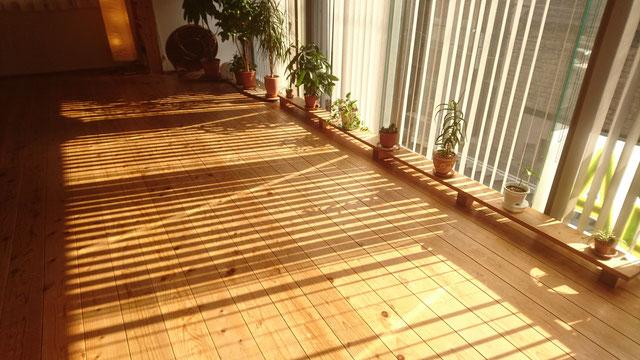 神戸でヨガと瞑想 礒野卓 イソノタク いそのたく Taku Isono  プロフィール