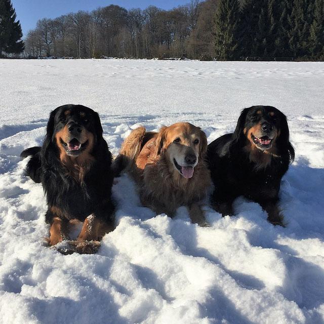Baki, Thaler und Annabelle