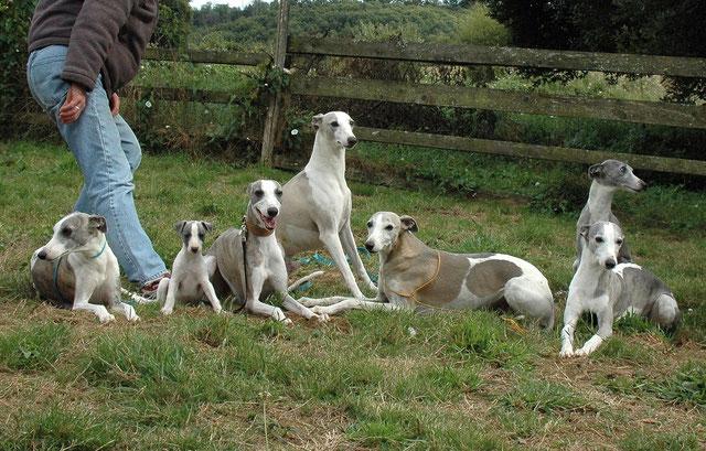 Photo de famille de Bayanne avec de gauche à droite sa mère, bayanne, son père, ses 2 grands pères, et ses 2 grands mères