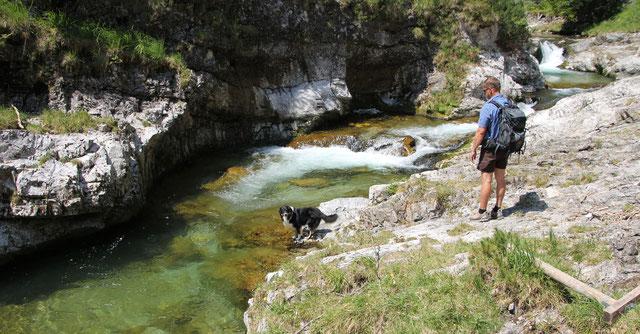 Wandern mit Hund Weißbachschlucht