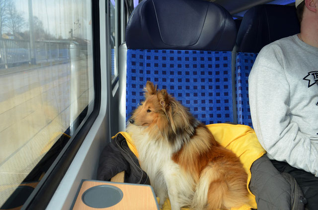 Bahn fahren :-)