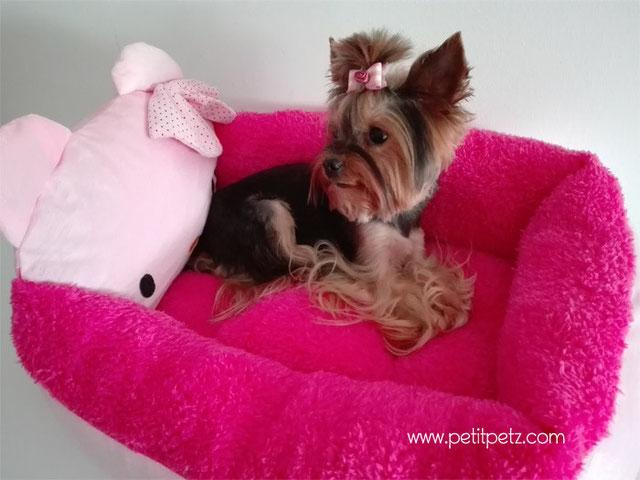 cama para perros modelo Hello Kitty, ideal para perros pequeños