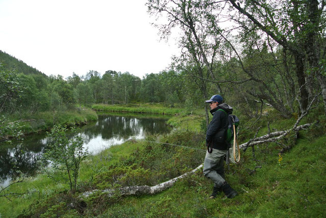exploring a norway river in search of trout grayling char on flyrod flyfishing
