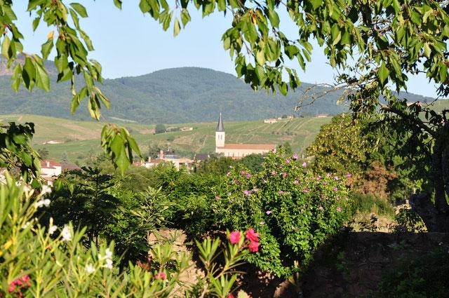 Le village de Juliénas vu du jardin