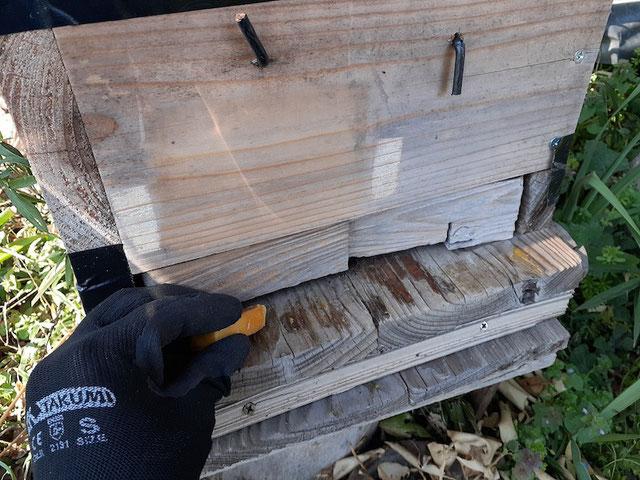 ミツバチが出入りする扉付近に蜜蝋を塗る。香りで寄ってくるのだとか。