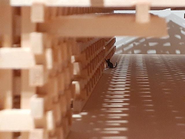 梼原 木橋ミュージアム2010