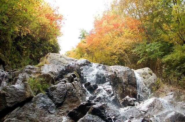 乙女の滝と紅葉