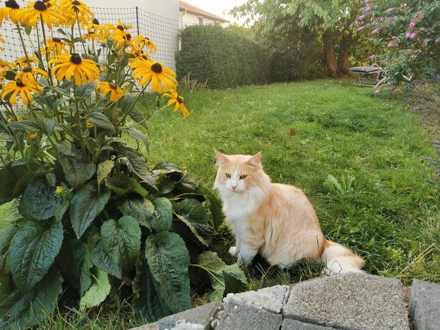 Mika findet den neuen Sonnenhut toll...