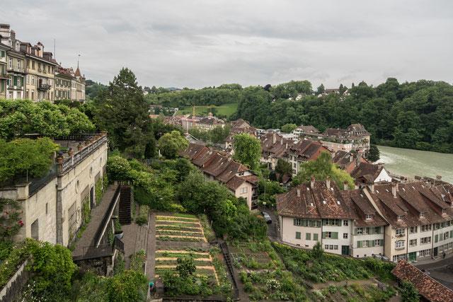Die Matte, von der Münsterplattform aus gesehen, 5. Juni 2017, Sony A7RII, Canon 17 mm tse.