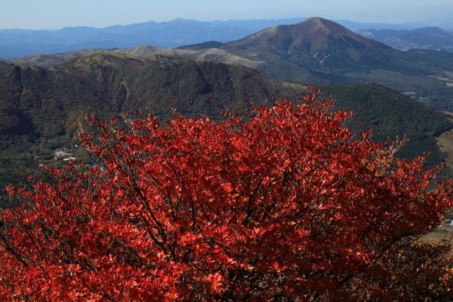紅葉と湧蓋山(後方)