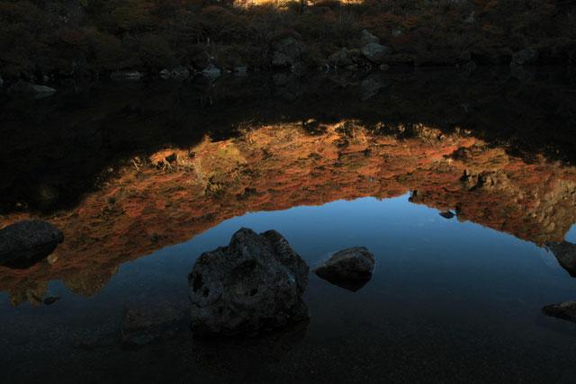 御池に映り込む日の入り前の紅葉